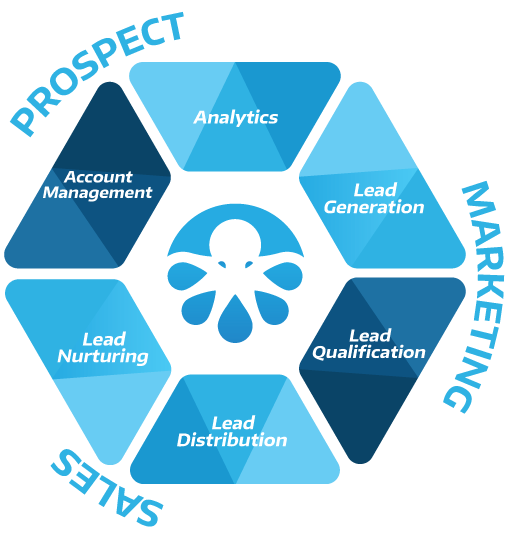Lead Generation, Qualification, Distribution, Nurturing, Management and Analytics